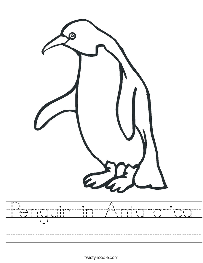 Penguin in Antarctica Worksheet