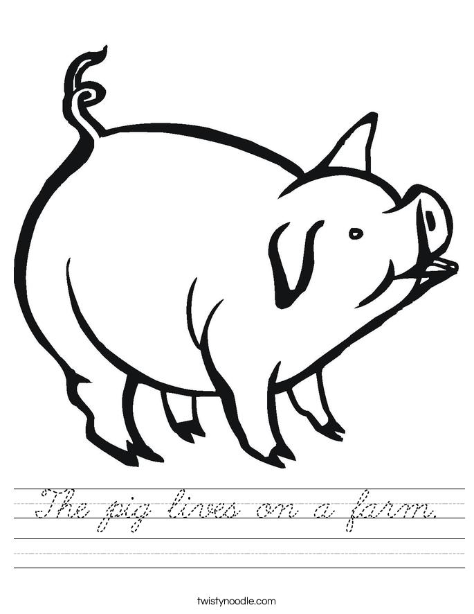The pig lives on a farm. Worksheet