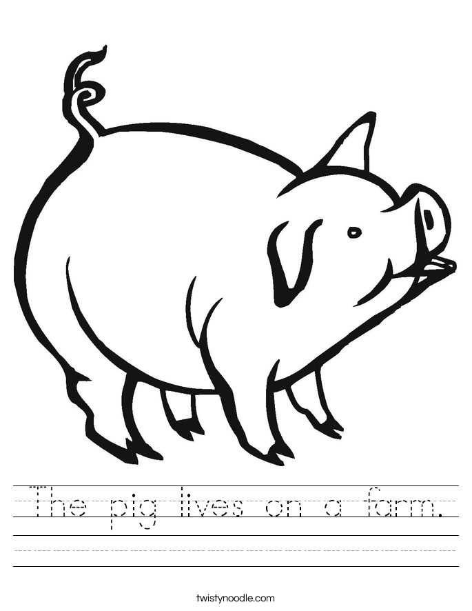 The pig lives on a farm. Worksheet