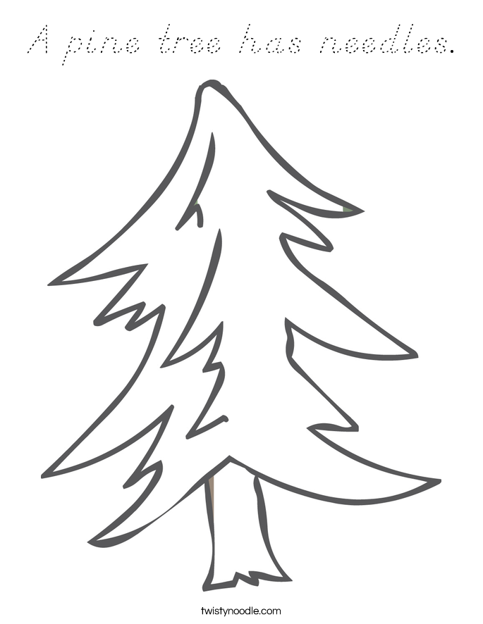 A pine tree has needles. Coloring Page