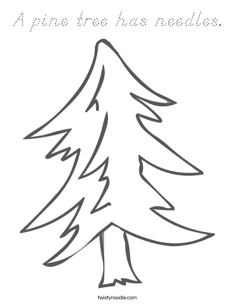 Pine Tree Coloring Page