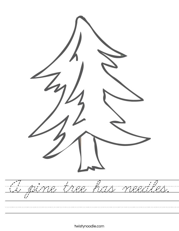 A pine tree has needles. Worksheet