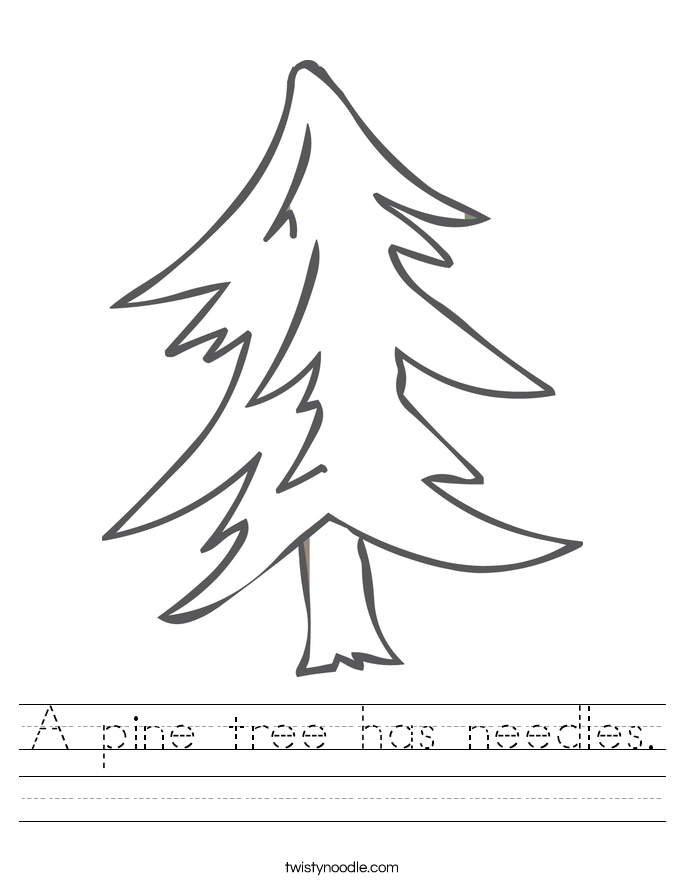 A pine tree has needles. Worksheet