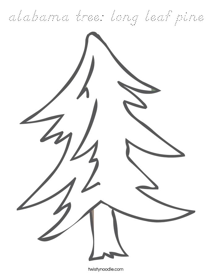alabama tree: long leaf pine Coloring Page