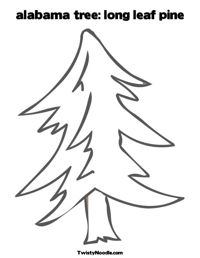 evergreen tree coloring pages - photo#41