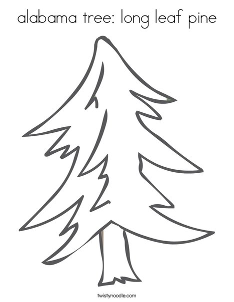 Alabama tree long leaf pine coloring page twisty noodle for State of alabama coloring pages