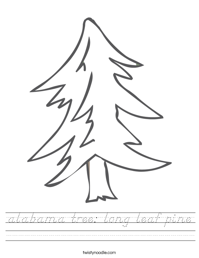 alabama tree: long leaf pine Worksheet