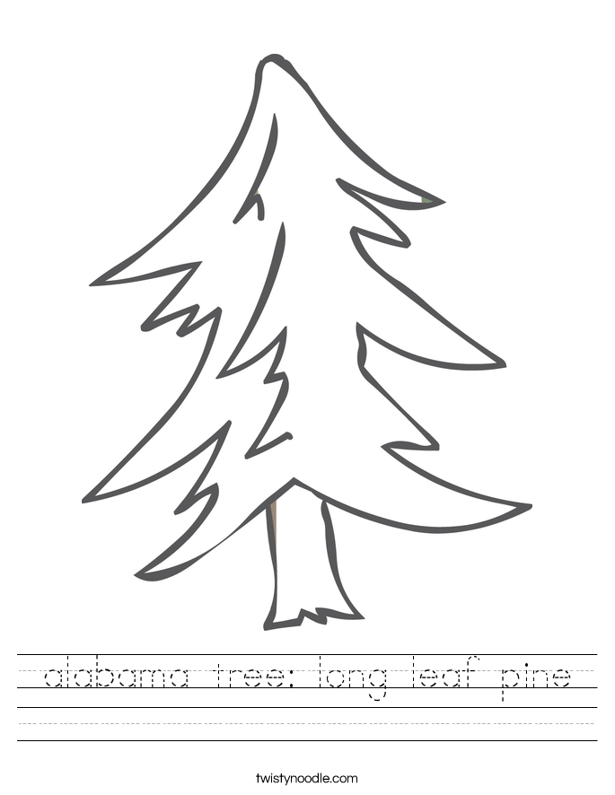 alabama tree: long leaf pine Worksheet