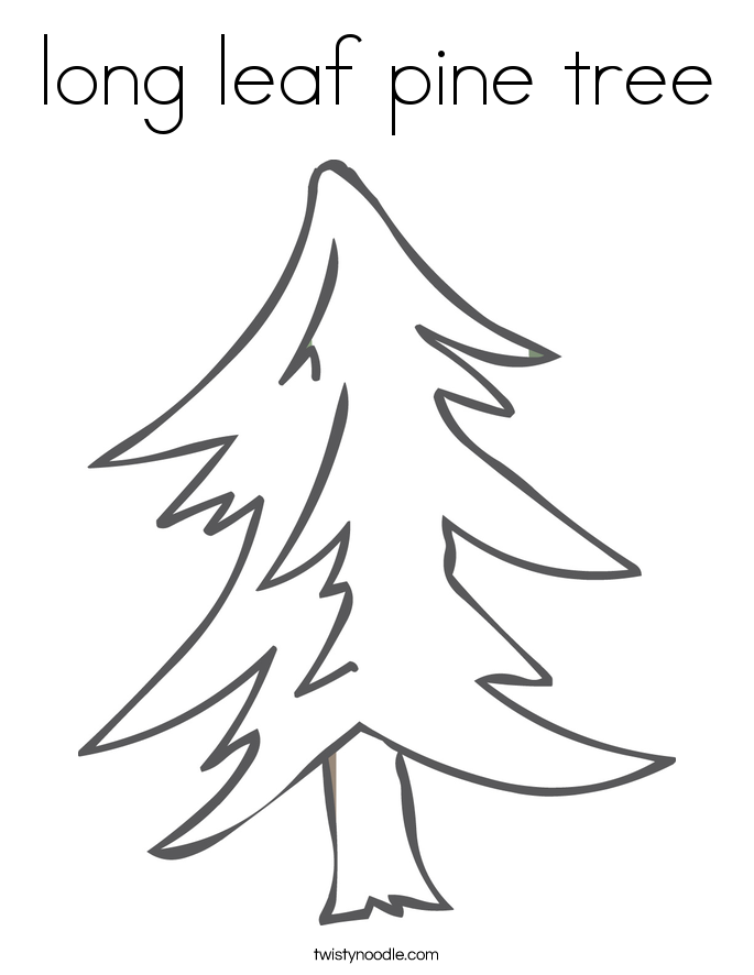 long leaf pine tree Coloring Page