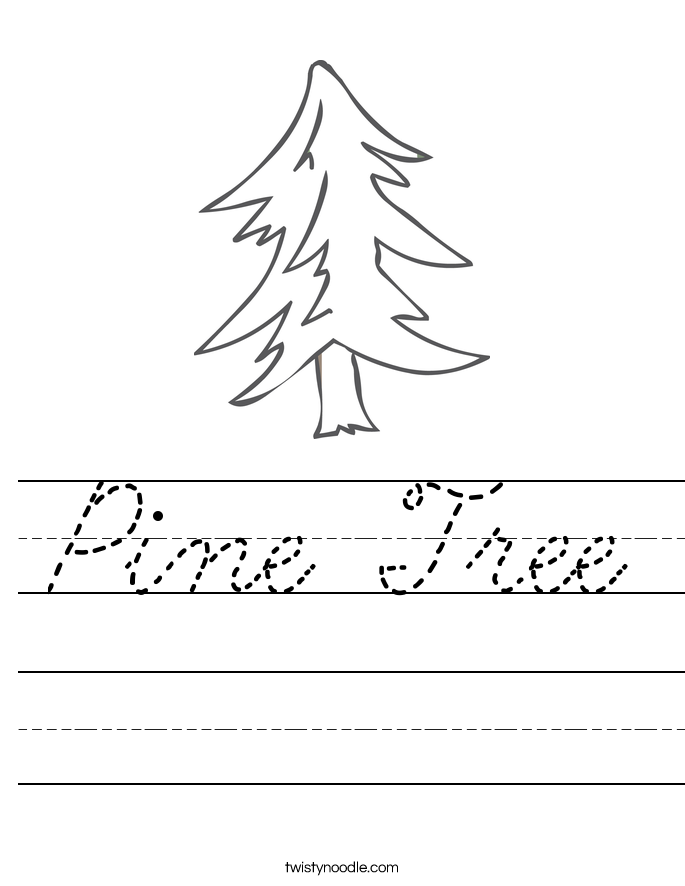 Pine Tree Worksheet Cursive Twisty Noodle