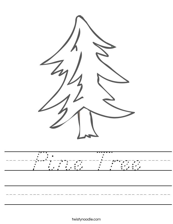 Pine Tree Worksheet