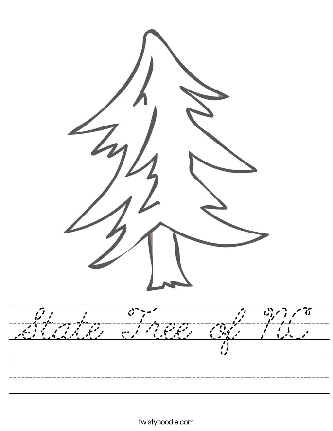 State Tree of NC Worksheet