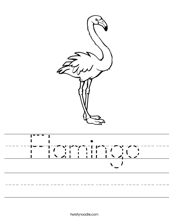 Flamingo Worksheet