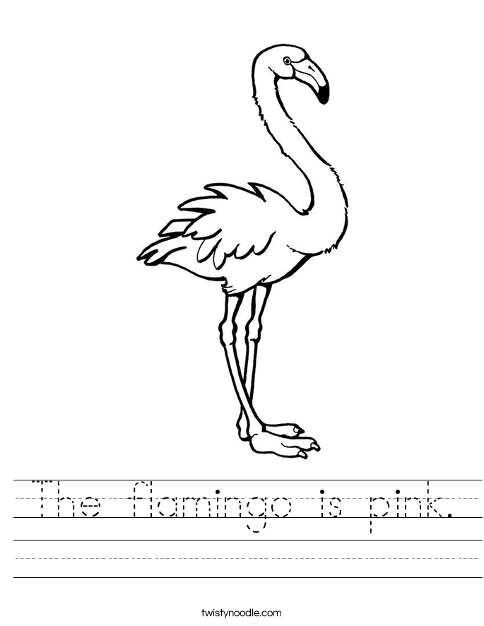 The flamingo is pink. Worksheet