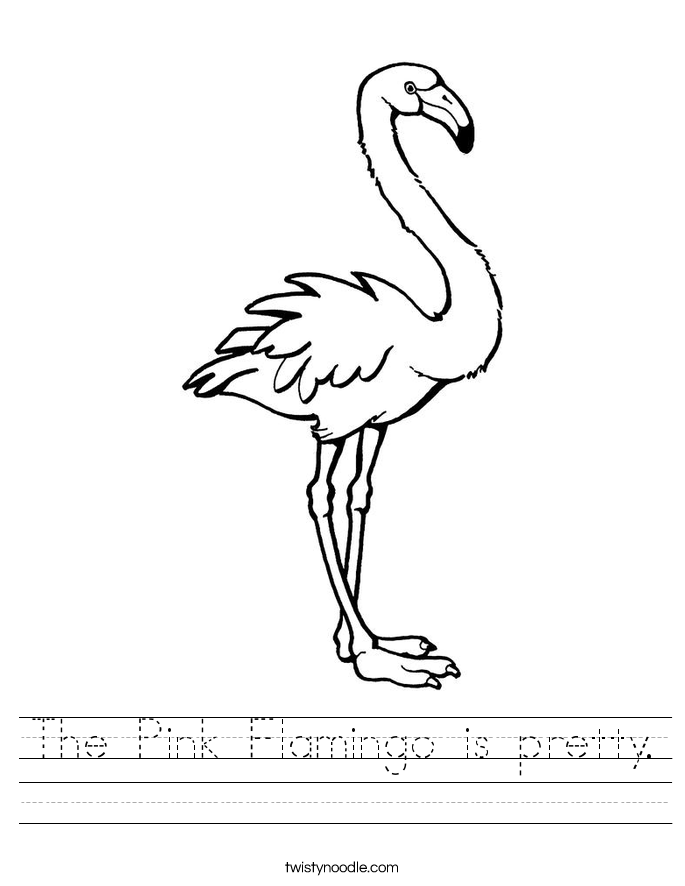 The Pink Flamingo is pretty. Worksheet