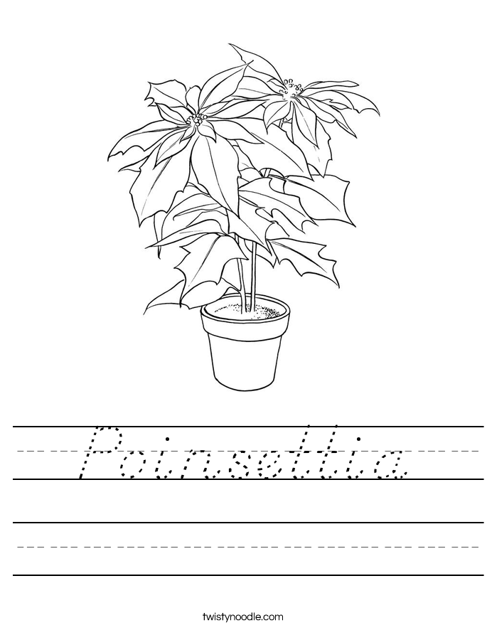 Poinsettia Worksheet