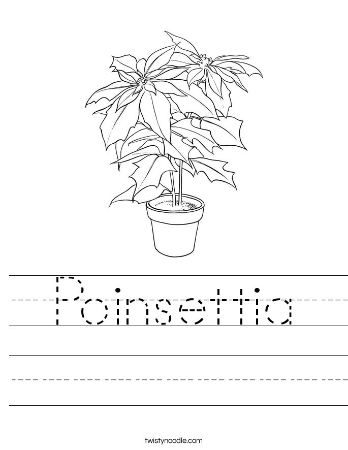 Poinsettia Worksheet