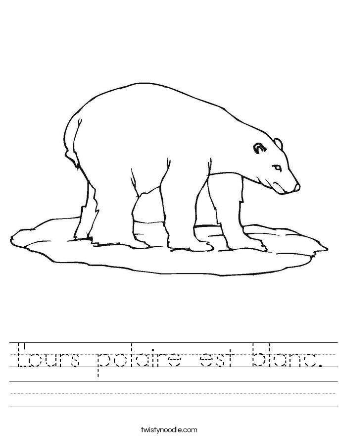 L'ours polaire est blanc. Worksheet