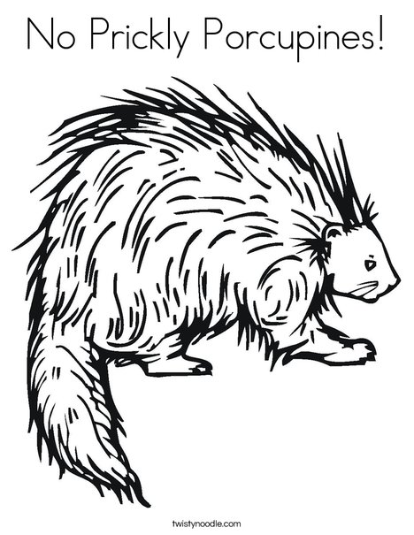 Porcupine Coloring Page
