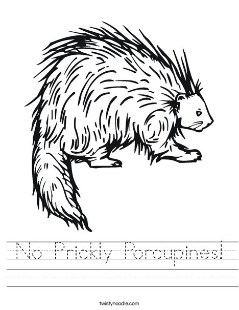 Porcupine Worksheet
