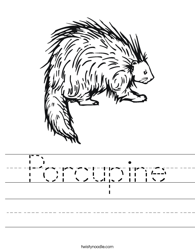 Porcupine Worksheet - Twisty Noodle
