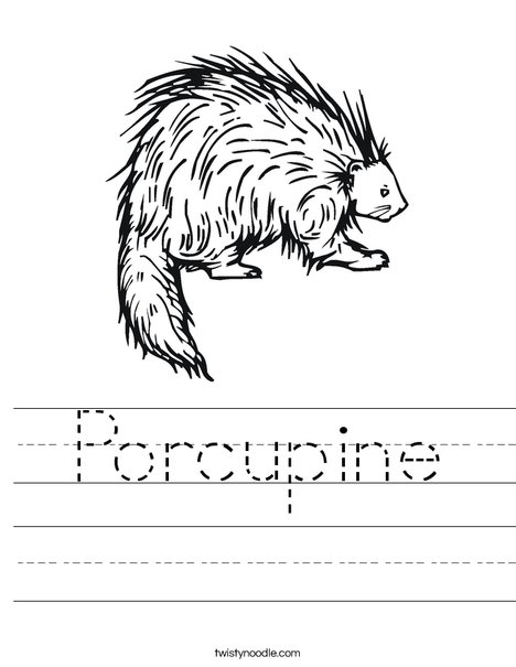 Porcupine Worksheet