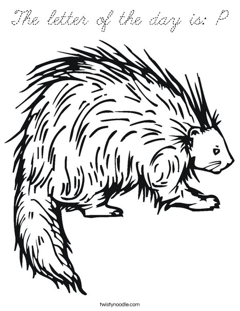 Porcupine Coloring Page
