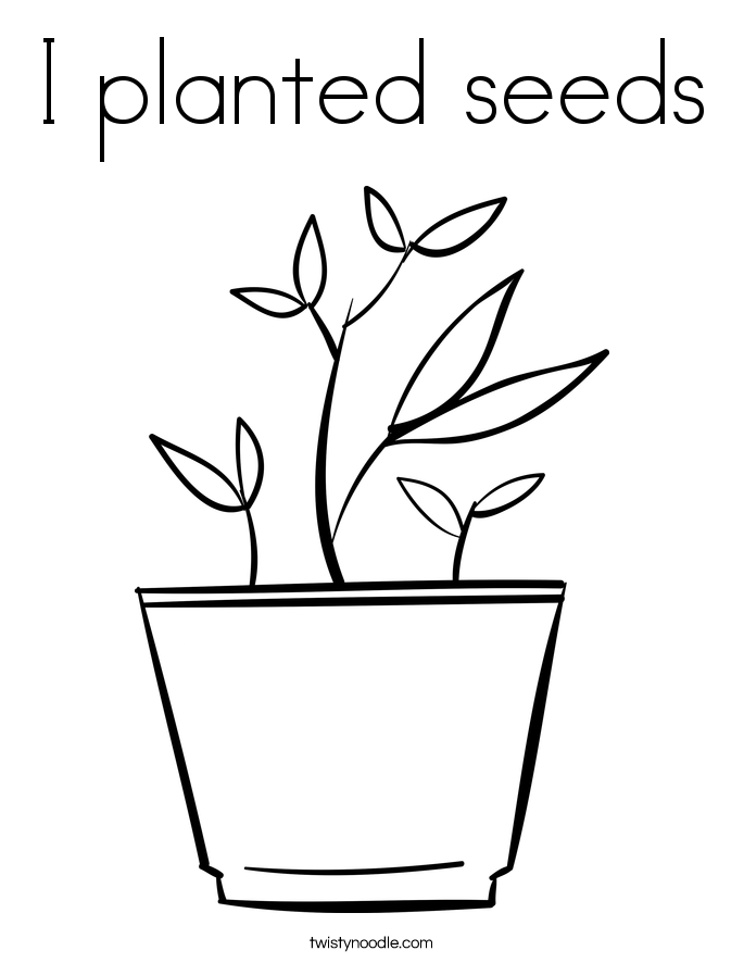 Plant Sprout Color Pages Plant Sprout Color Pages Plant Life ...