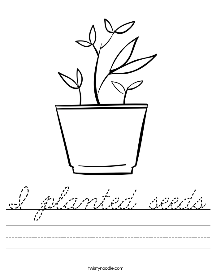 I planted seeds Worksheet