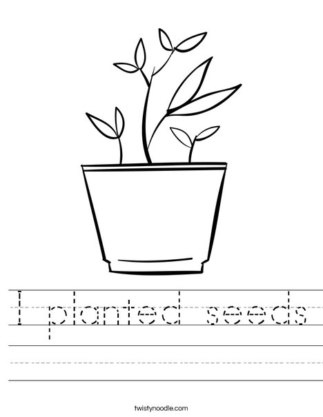 Potted Plant Worksheet