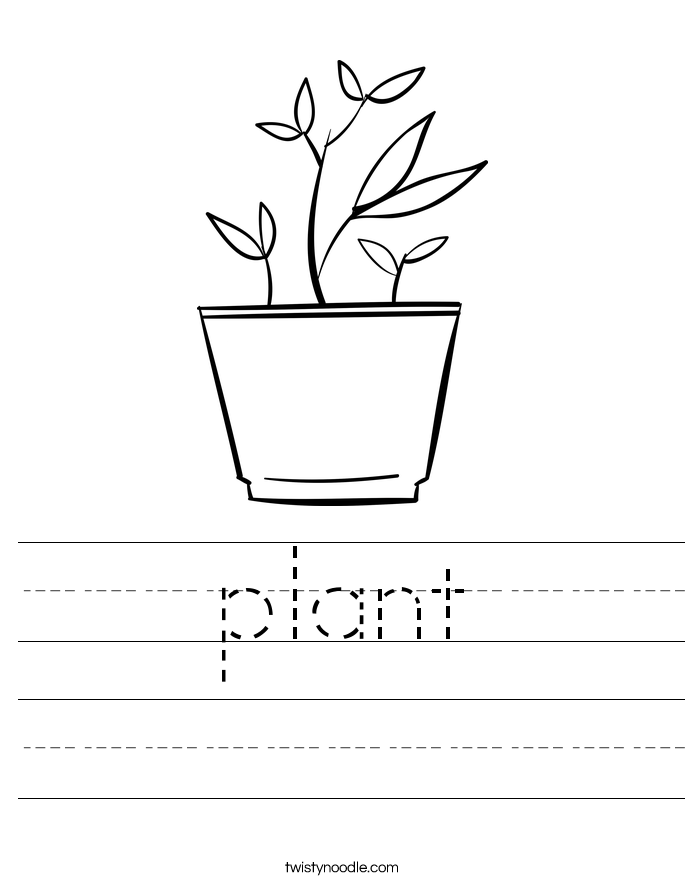 plant Worksheet