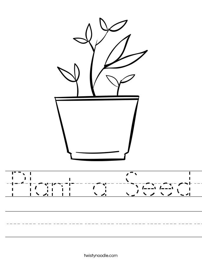 Plant a Seed Worksheet.