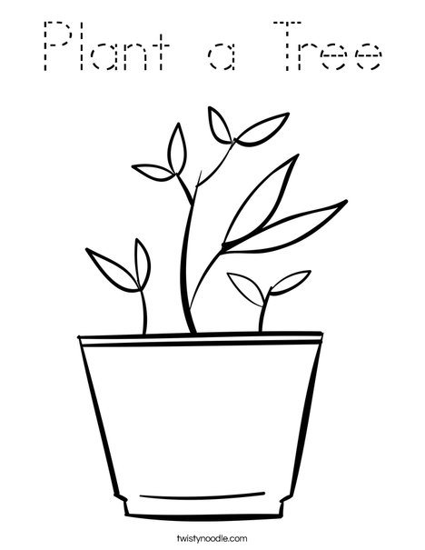 Potted Plant Coloring Page