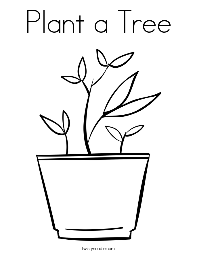 Plant a Tree Coloring Page Twisty Noodle