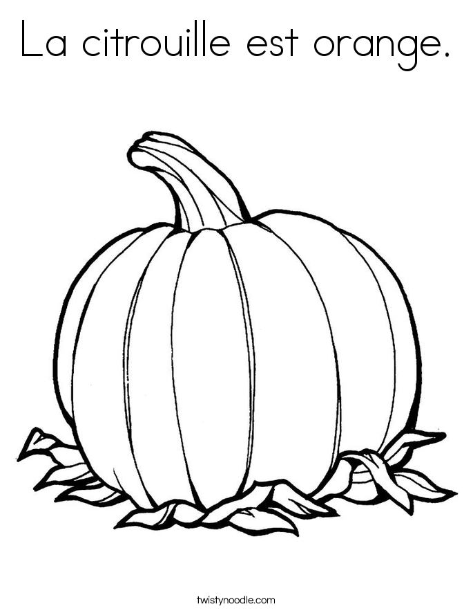 La citrouille est orange. Coloring Page