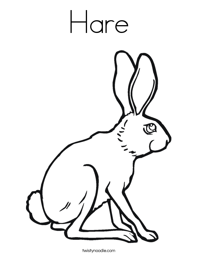 Arctic Hare Coloring Pages Coloring