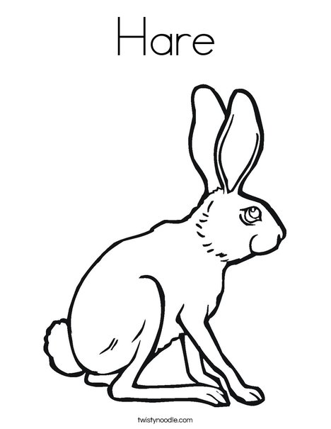 Hare Coloring Page