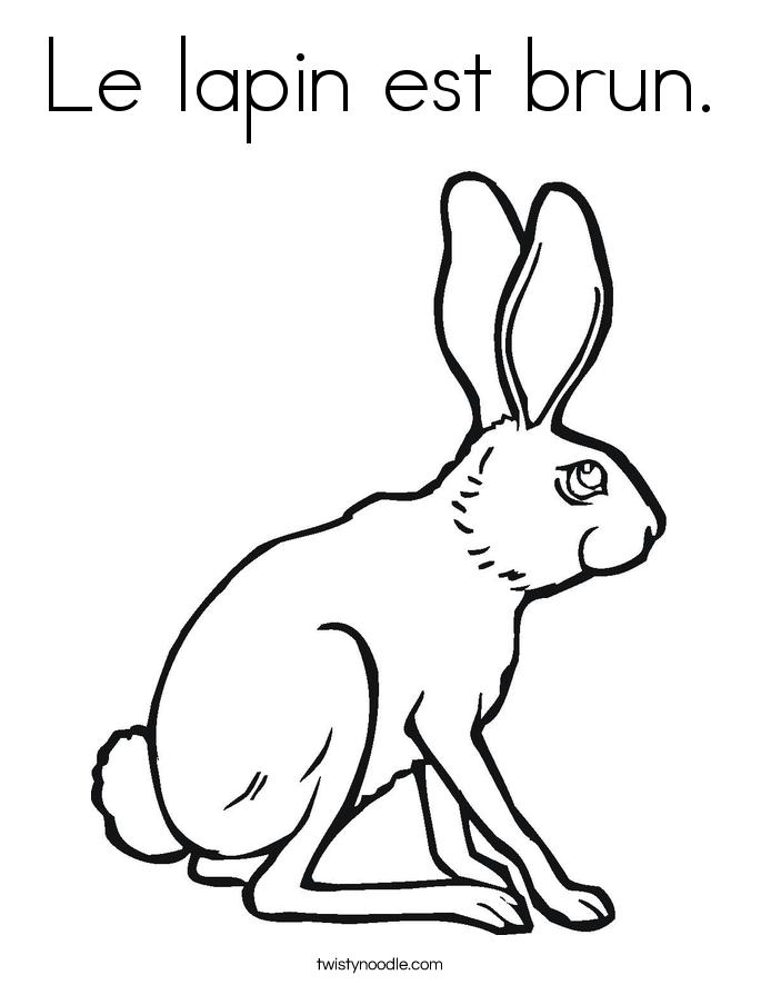 Le lapin est brun. Coloring Page
