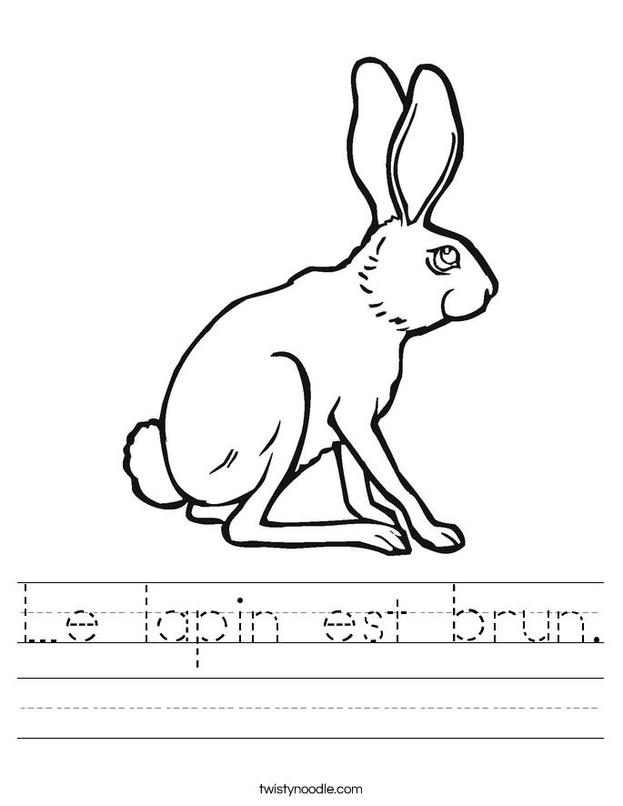 Le lapin est brun. Worksheet