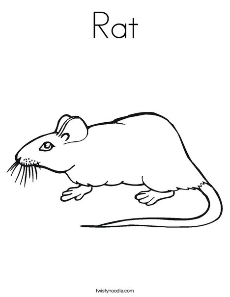 rat coloring page twisty noodle