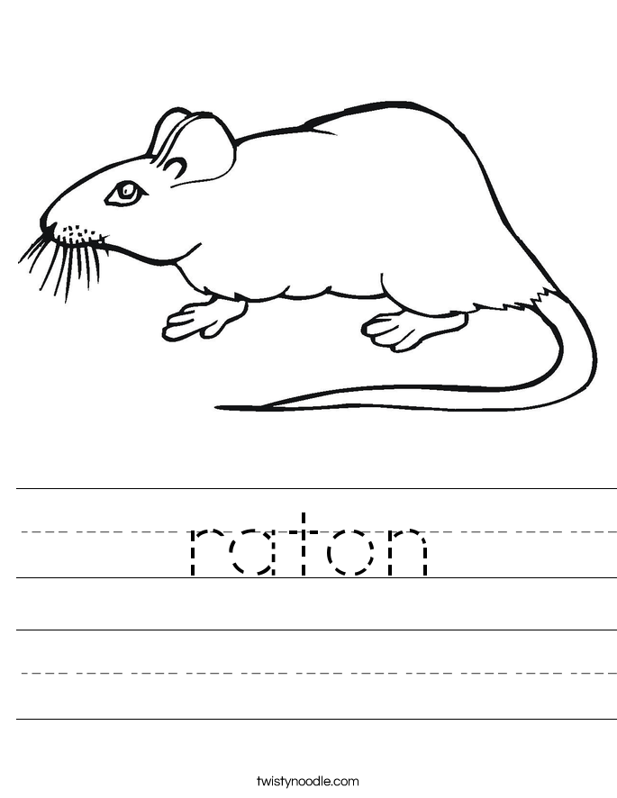 raton Worksheet