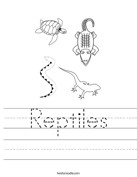 Reptiles Worksheet