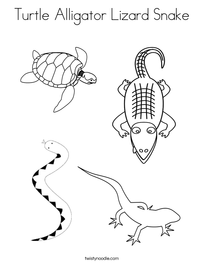 Turtle Alligator Lizard Snake Coloring Page