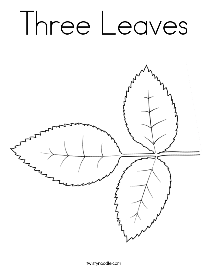 Three Leaves Coloring Page