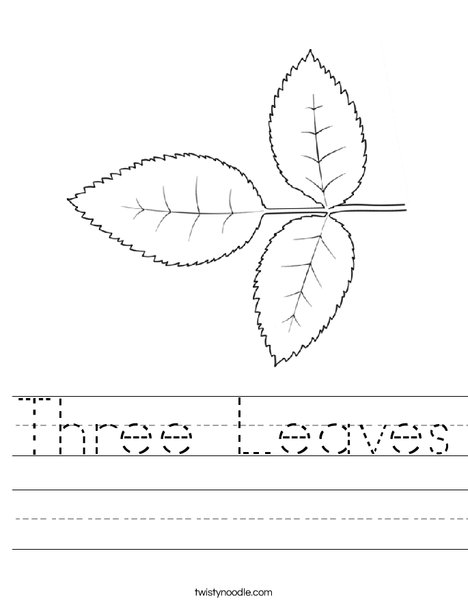 Three Leaves Worksheet - Twisty Noodle