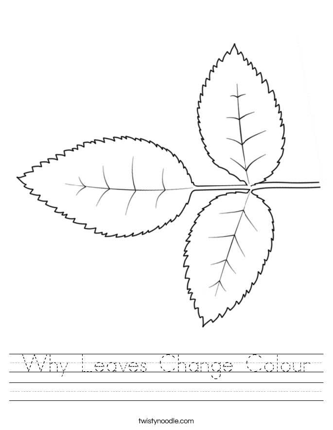 Why Leaves Change Colour Worksheet