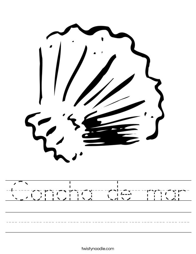 Concha de mar Worksheet