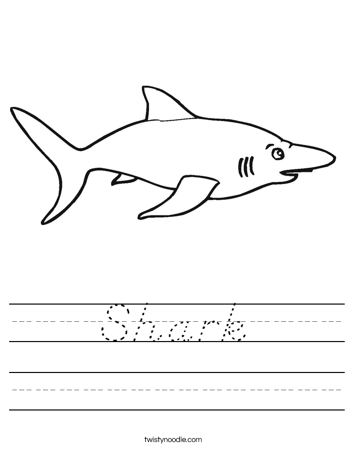 Shark Worksheet
