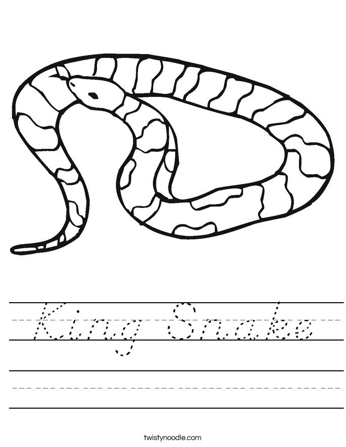 King Snake Worksheet