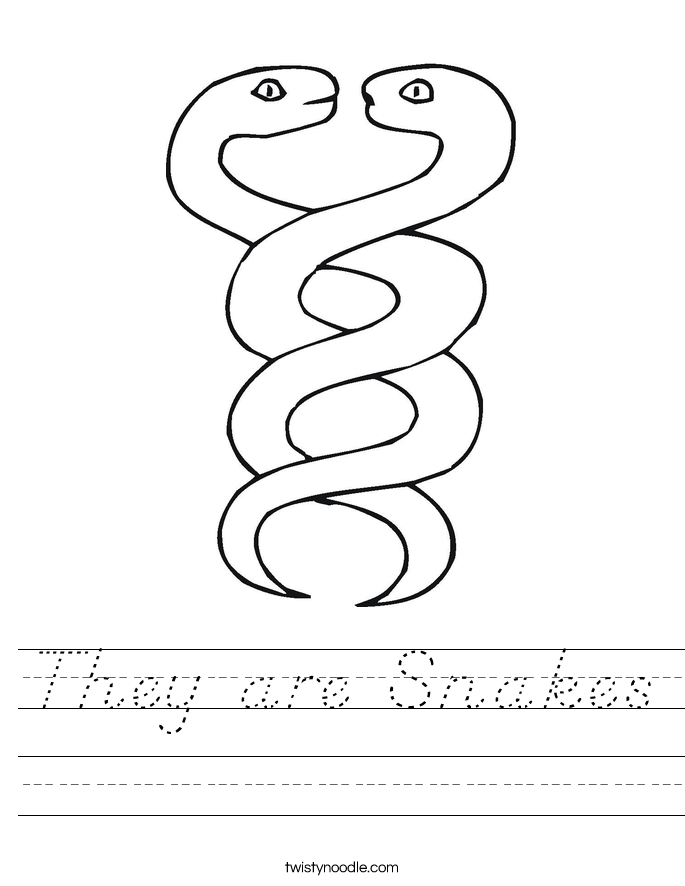 They are Snakes Worksheet